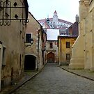 Bratislava Back Street View Of The Castle by mcworldent