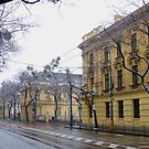 Bratislava Street In Winter - After Snow by mcworldent