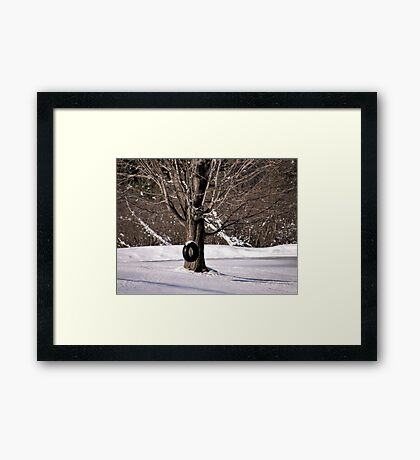 Year-Round Fun Framed Print