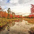 Autumn Fall Foliage Grantham New Hampshire by Edward Fielding
