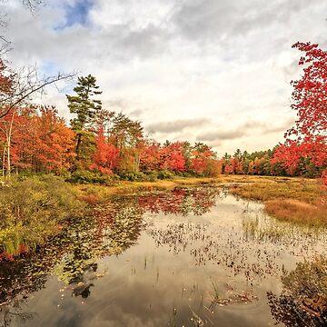 Autumn Fall Foliage Grantham New Hampshire by peanutroaster