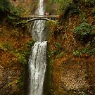 Multnomah Falls Columbia River Gorge National Scenic Area Oregon by Martin Lawrence