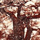 African Shadow Tree 1 by Menega  Sabidussi