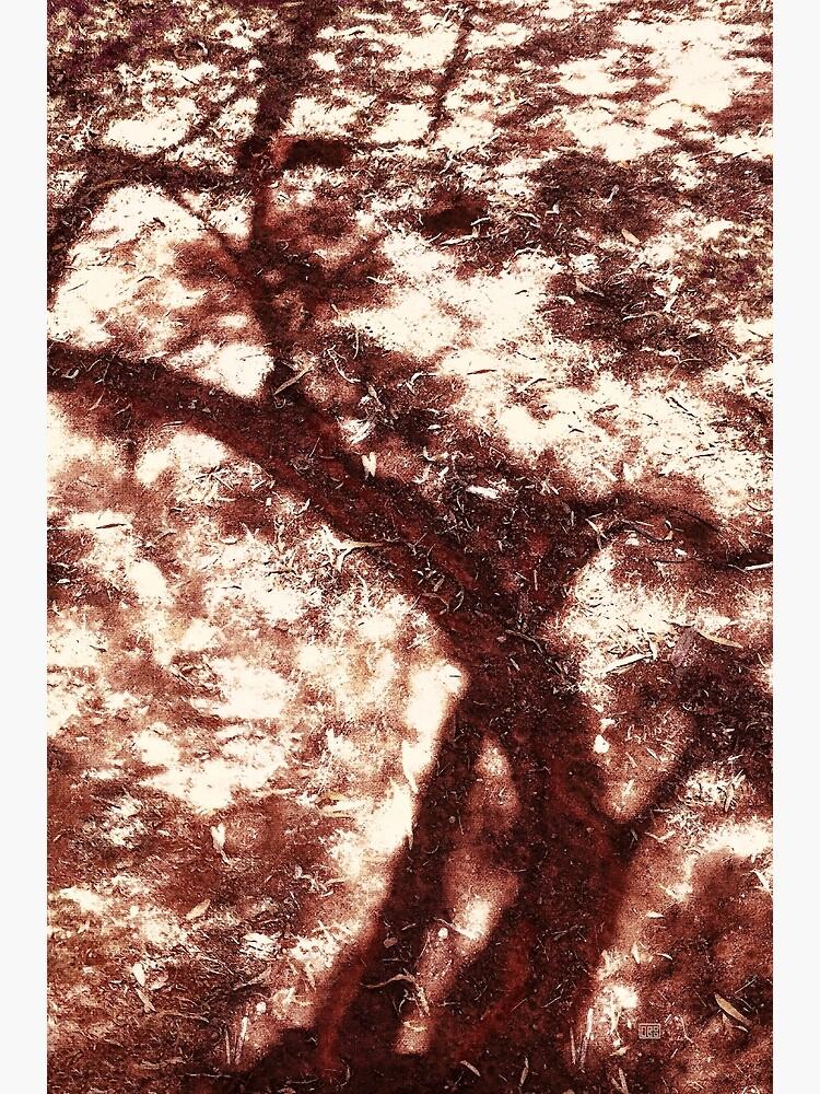 African Shadow Tree 2 by MenegaSabidussi