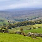 Udale Panorama by mikebov