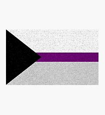 Demisexual Flag- Painted on a Wall Photographic Print