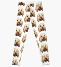 personalised dog Leggings