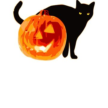Black Cat and Jack o Lantern  by BiagioDeFranco