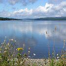 Loch Rannoch in Summer by Lindamell