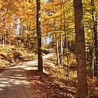 Redbird Crest Trail by Ann Eldridge