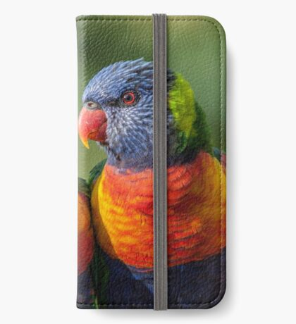 Rainbow Lorikeets iPhone Wallet