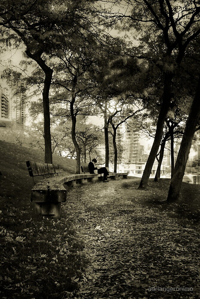 Afternoon in the Park by adriangeronimo