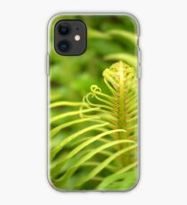 Tropical Tree Fern iPhone Case