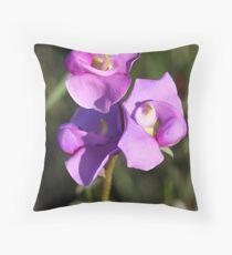 Broughton Pea. Swainsona procumbens Fabaceae Throw Pillow