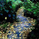 Forgotten Autumn Stairs by Eranthos Beretta