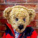 Whisper The Listening Bear™ by Angela  Burman