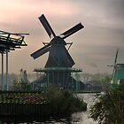 Windmills of Amsterdam ( 8 ) by Larry Davis