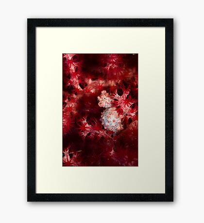 Better Red than Dead Framed Print