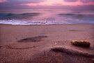 Corn on the beach! by Vikram Franklin