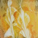 Paper Blooms by linmarie