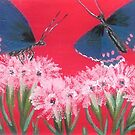 Butterflies Pink on Pink by Carol Megivern