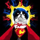 It's a Supercat! -design  by Donata Zawadzka