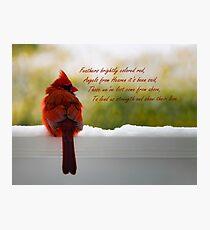 Männlicher Kardinal - Besucher vom Himmel Zitat Fotodruck
