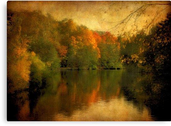 Autumn's Mirror by Jessica Jenney