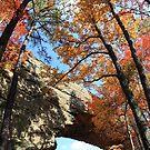 Natural Bridge by Scarlett