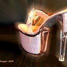 Pink Shoe by Richard Skoropat