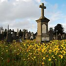 Glasnevin Cemetery in the fall. by Nancy Huenergardt