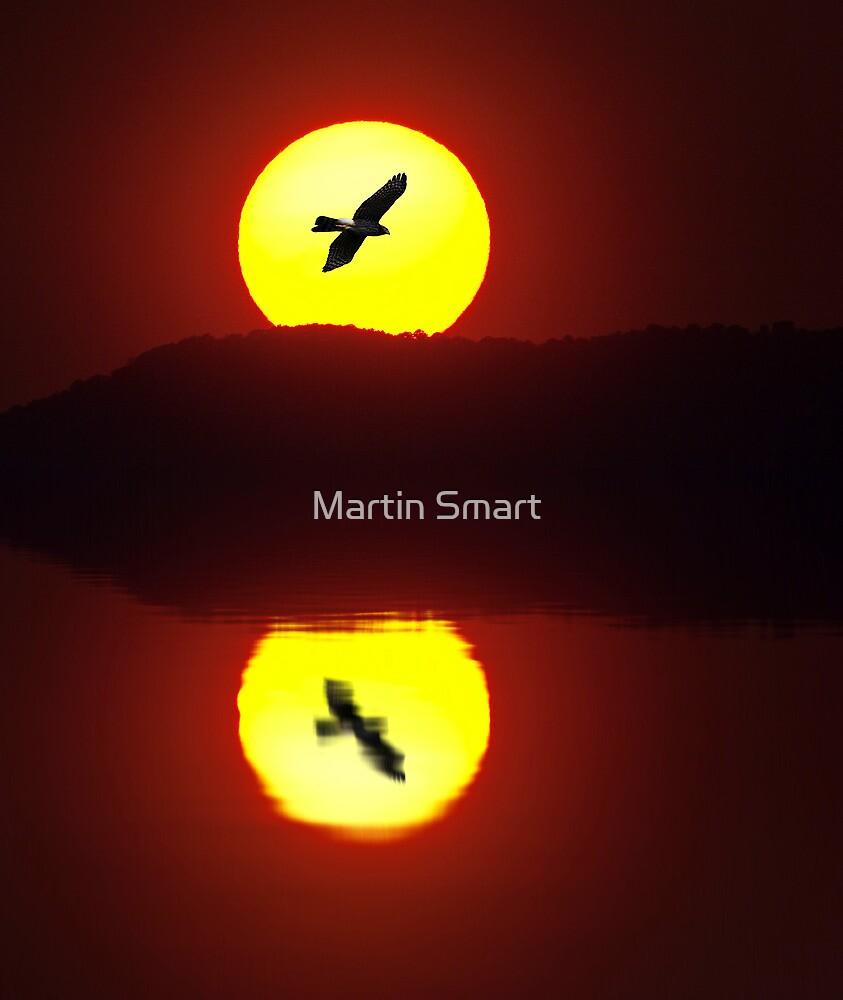 Burning Desire by Martin Smart