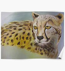Wild And Beautiful Animal Poster