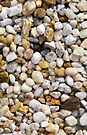 River Pebbles Rocks in Brown, Gray and White by ValeriesGallery