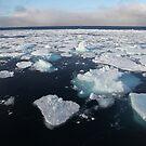 Ice Breaking on the Polar Star by John Dalkin