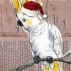 Cockatoo Christmas card by Michele Meister