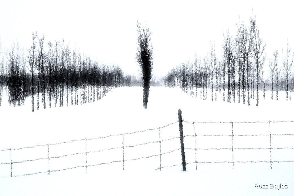 Snowbound Sentinel by Russ Styles