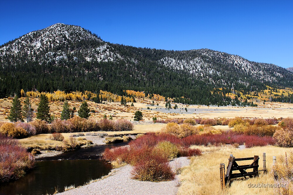High Country Meadow by doubleheader