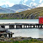 Whaling Station Dock by Marylou Badeaux