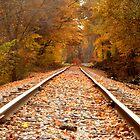 Autumn Tracks by lroof