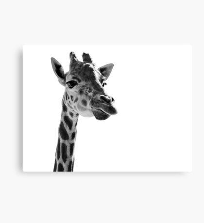Giraffe Expressionism Canvas Print