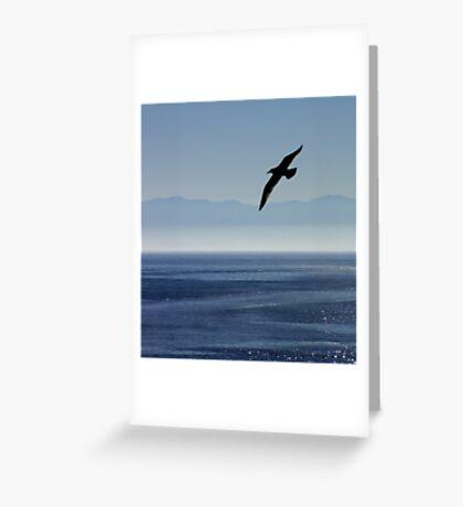CANADA BIRD Greeting Card
