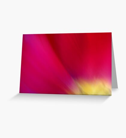Tulip Sunrise Greeting Card