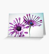 Whirligig daisies Greeting Card