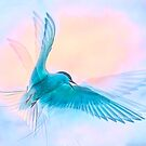 Ethereal Arctic Tern by Brian Tarr