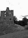 Swarm At The Castle by Ryan Davison Crisp