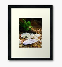 Air Bubbles Under Water, Framed Print