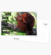 How Are You Doing Today Postcards