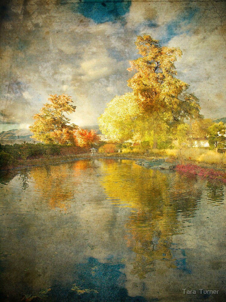 Autumn in the Pond by Tara  Turner