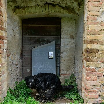Street art installation by Maurizio Cattelan, Horti Leonini, San Quirico D'Orcia, Tuscany, Italy by AndyJones